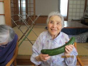 GH菜の花 『野菜の収穫』を行いました🥬